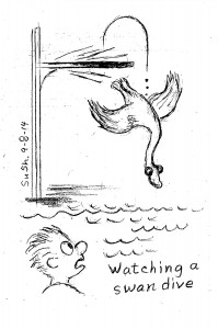 man watching a swan dive into a pool