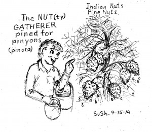 pencil drawing of a man gathering pine nuts